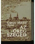 Az öreg Szeged (mini) - Cserzy Mihály