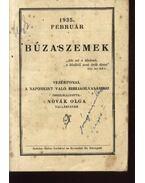 Búzaszemek - Novák Olga