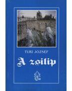A zsilip - Turi József