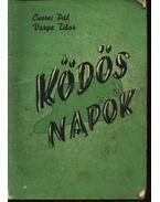 Ködös napok - Cserei Pál, Varga Tibor