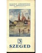Szeged - Bodnár Gyula, dr.