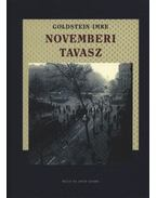 Novemberi tavasz - Goldstein Imre