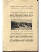 A magyarországi borókások madárvilága - Kolosváry Gábor, dr.