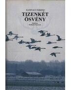 Tizenkét ösvény - Ilosvay Ferenc