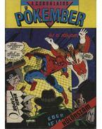 A csodálatos Pókember és a sólyom - Matteis, J. M. De