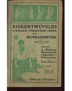 Kiskertművelés a socialis törekvések terén - Szántó Győző, Rédei Dezső