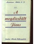 A megdicsőült Jézus - Avancinus Miklós