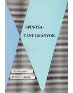 Spinoza-tanulmányok - Boros Gábor