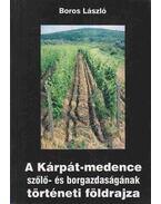 A Kárpát-medence szőlő- és borgazdaságának történeti földrajza - Boros László