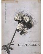 Die Phacelia - Böttcher, Helmuth