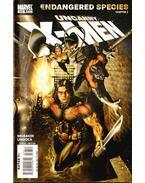 Uncanny X-Men No. 488 - Brubaker, Ed, Larroca, Salvador