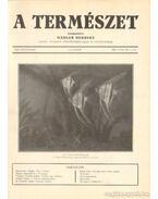A természet 1934. XXX. évf. (teljes) - Nadler Herbert