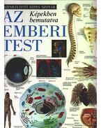 Az emberi test képekben bemutatva - Chez Picthall