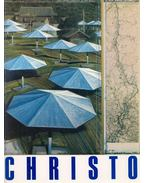 Christo from the Rothschild AG Zurich Collection
