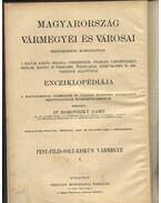 Pest.Pilis-solt-Kiskun Vármegye I.kötete - Borovszky Samu