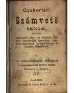 Gyakorlati számvető tábla - Rezgey László