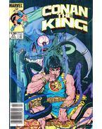 Conan the King Vol. 1 No. 21 - Zelenetz, Alan, Silvestri, Marc