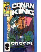 Conan the King Vol. 1 No. 23 - Zelenetz, Alan, Silvestri, Marc