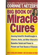 Big Book of Miracle Cures - Corinne T. Netzer