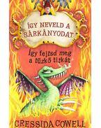 Így neveld a sárkányodat - Így fejtsd meg a tűzkő titkát - Cressida Cowell