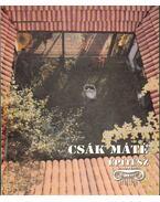 Csák Máté építész - Csák Ferenc