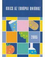 Kulcs az Európai Unióhoz 2005 - Csákó Beáta