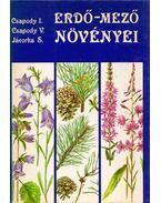 Erdő-mező növényei - Csapody Vera, Jávorka Sándor, Csapody István
