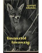 Tavasztól tavaszig - Csathó Kálmán