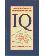 IQ Intelligencia tesztek - Csiffáry Tamás