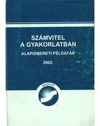 Számvitel a gyakorlatban - Alapismereti példatár 2002 - Czeglédiné Sindler Anna, Horváth Katalin, Rochlitzné Sajben Ágnes