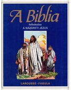 A Biblia felfedezése 1. - A názáreti Jézus - Dahler, Étienne, De France, Michel (szerk.)