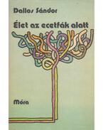 Élet az ecetfák alatt - Dallos Sándor
