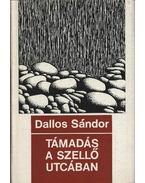 Támadás a Szellő utcában - Dallos Sándor