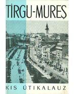 Tirgu-Mures - Dános Miklós