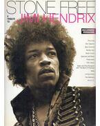 Stone Free: A Tribute to Jimi Hendrix - Dave Whitehill, Jeff Catania, Steve Gorenberg