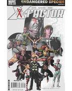 X-Factor No. 23. - David, Peter, Raimondi, Pablo