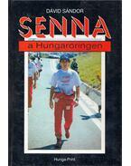 Senna a Hungaroringen - Dávid Sándor