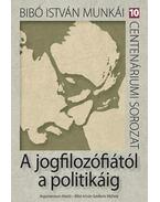 A jogfilozófiától a politikáig - Dénes Iván Zoltán