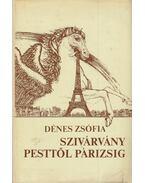 Szivárvány Pesttől Párizsig - Dénes Zsófia