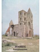 Zsámbék - Templomrom - Dercsényi Balázs