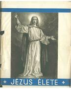 Jézus élete - Didon, P.
