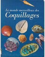 Le monde merveilleux des Coquillages - Donata Lucifora