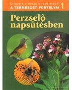 Perzselő napsütében - Dosztányi Imre (szerk.)
