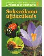 Sokszólamú újjászületés - Dosztányi Imre (szerk.)