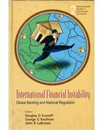 International Financial Instability: Global Banking and National Regulation - Douglas D. Evanoff, George G. Kaufman, John R. LaBrosse