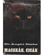 Macskák, cicák - Dr. Anghi Csaba