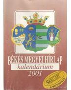 Békés Megyei Hírlap kalendárium 2001. - Dr. Árpási Zoltán (szerk.)