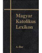 Magyar Katolikus Lexikon I. kötet - Dr. Diós István