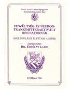 Feszültség és neurontranszmitteraktivált ioncsatornák - Dr. Erdélyi László