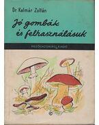 Jó gombák és felhasználásuk - Dr. Kalmár Zoltán